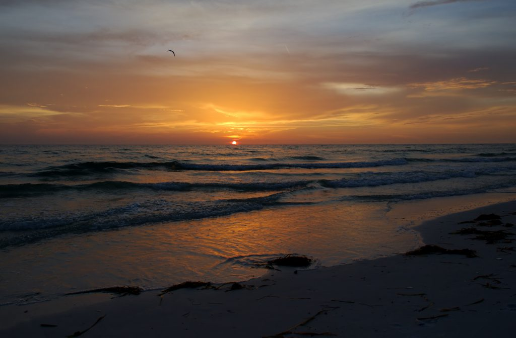 Have a Perfect Beach Day on Anna Maria Island