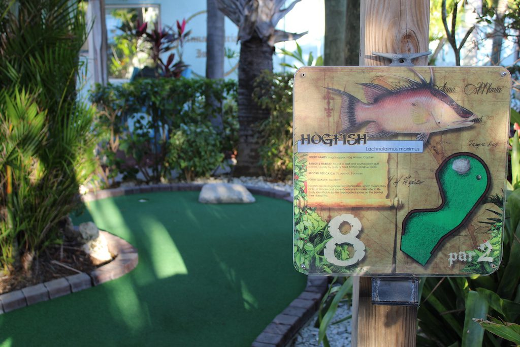 Mini Golf on AMI
