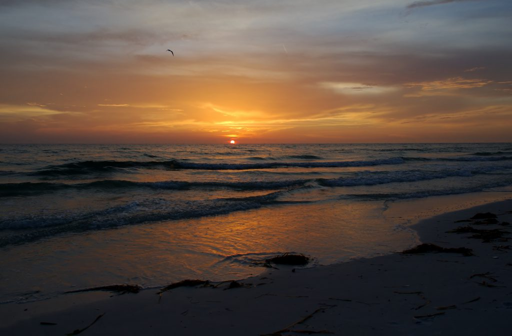 Perfect Places to See the Sunset on Anna Maria Island