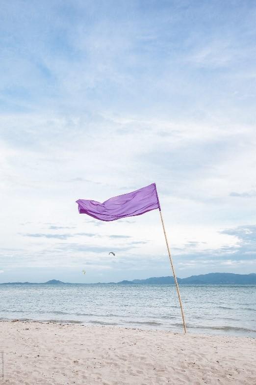 Purple Beach Flag - Dangerous Marine Life